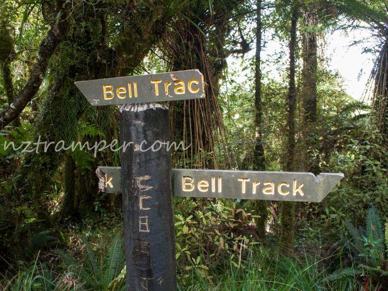 Nikau Walk to Tahuanui Track to Tirohanga Track to Pahautea Hut to Bell Track loop in Pirongia