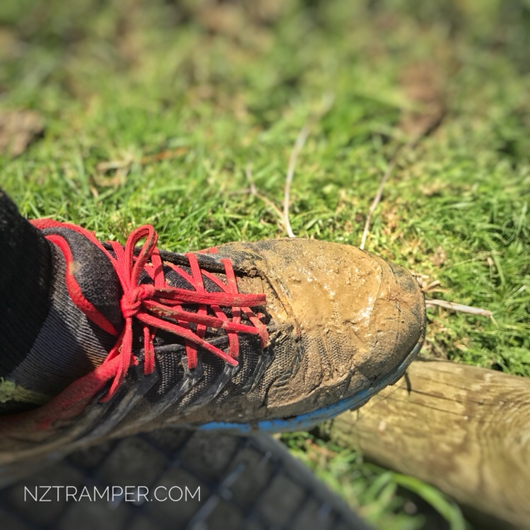 Trail running – Puhoi Domain to Moir Hill of Te Araroa Trail